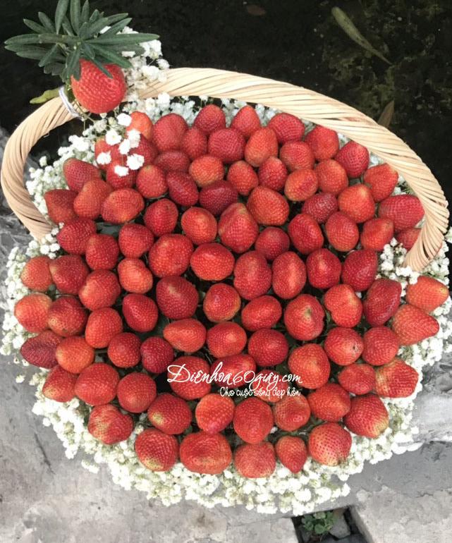 giỏ hoa dâu tây