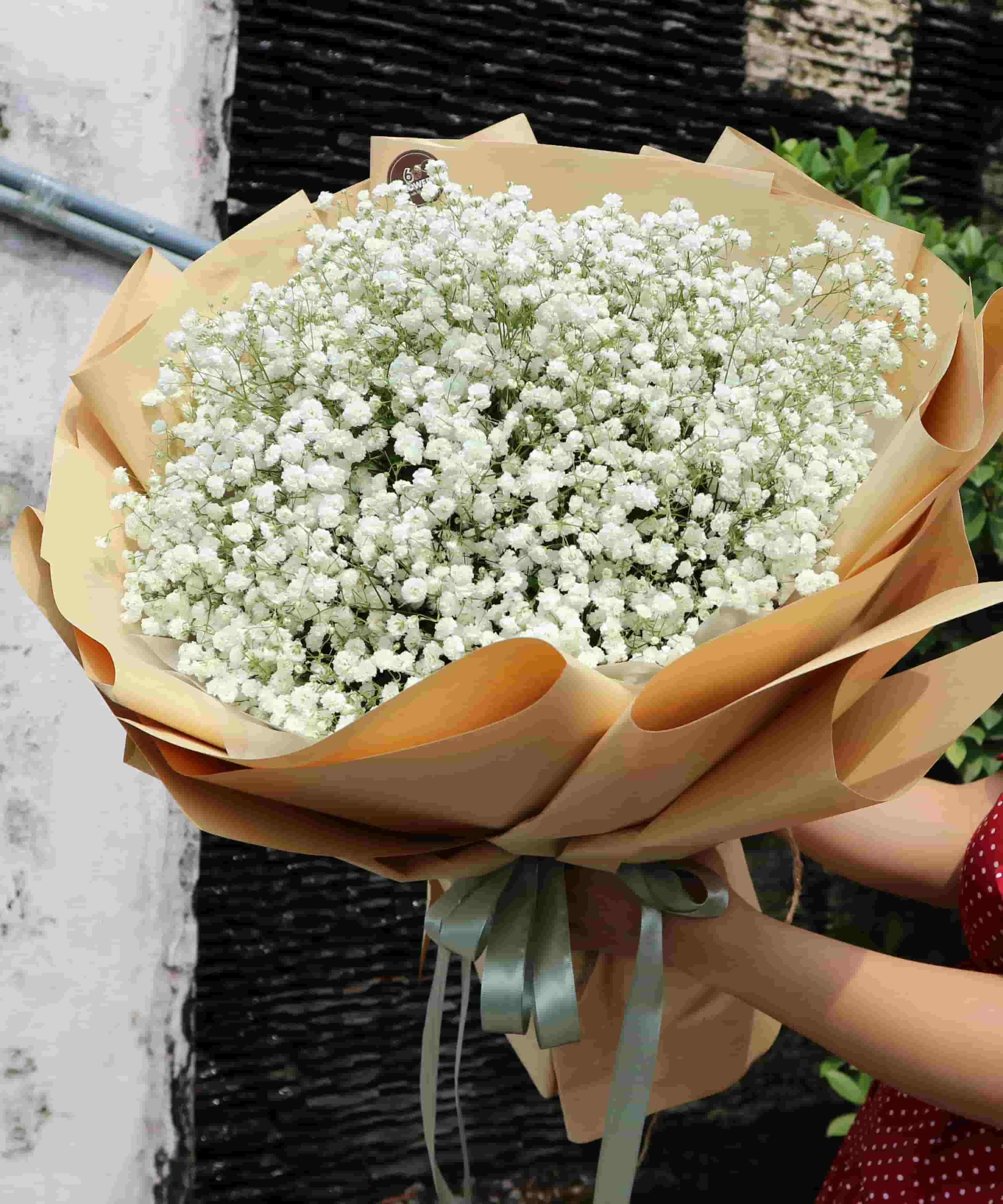 Hoa bó baby BHT016