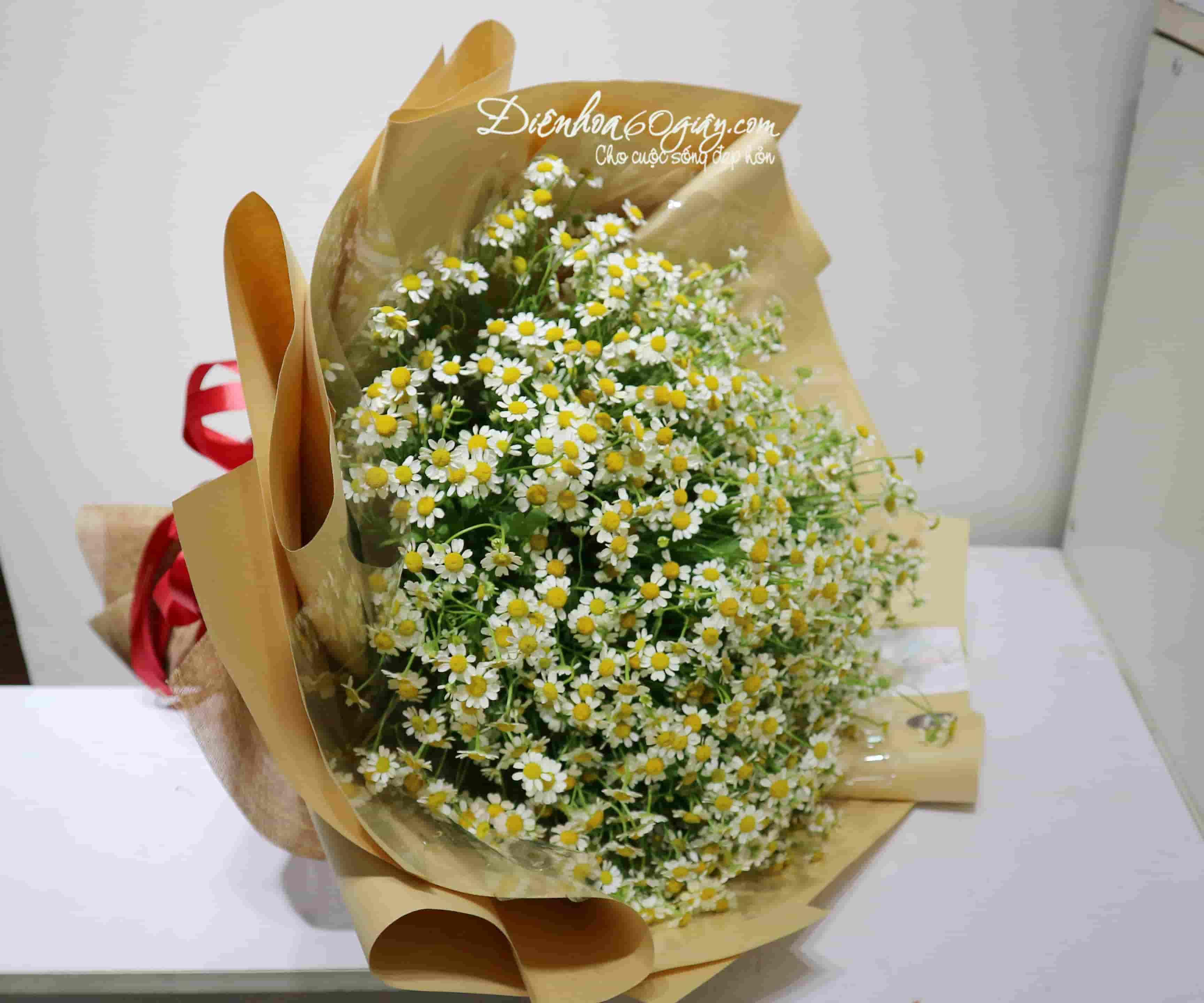 Bó hoa cúc tana BHT020