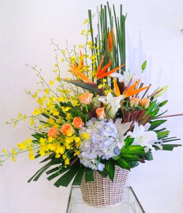 hoa sinh nhat HSN06