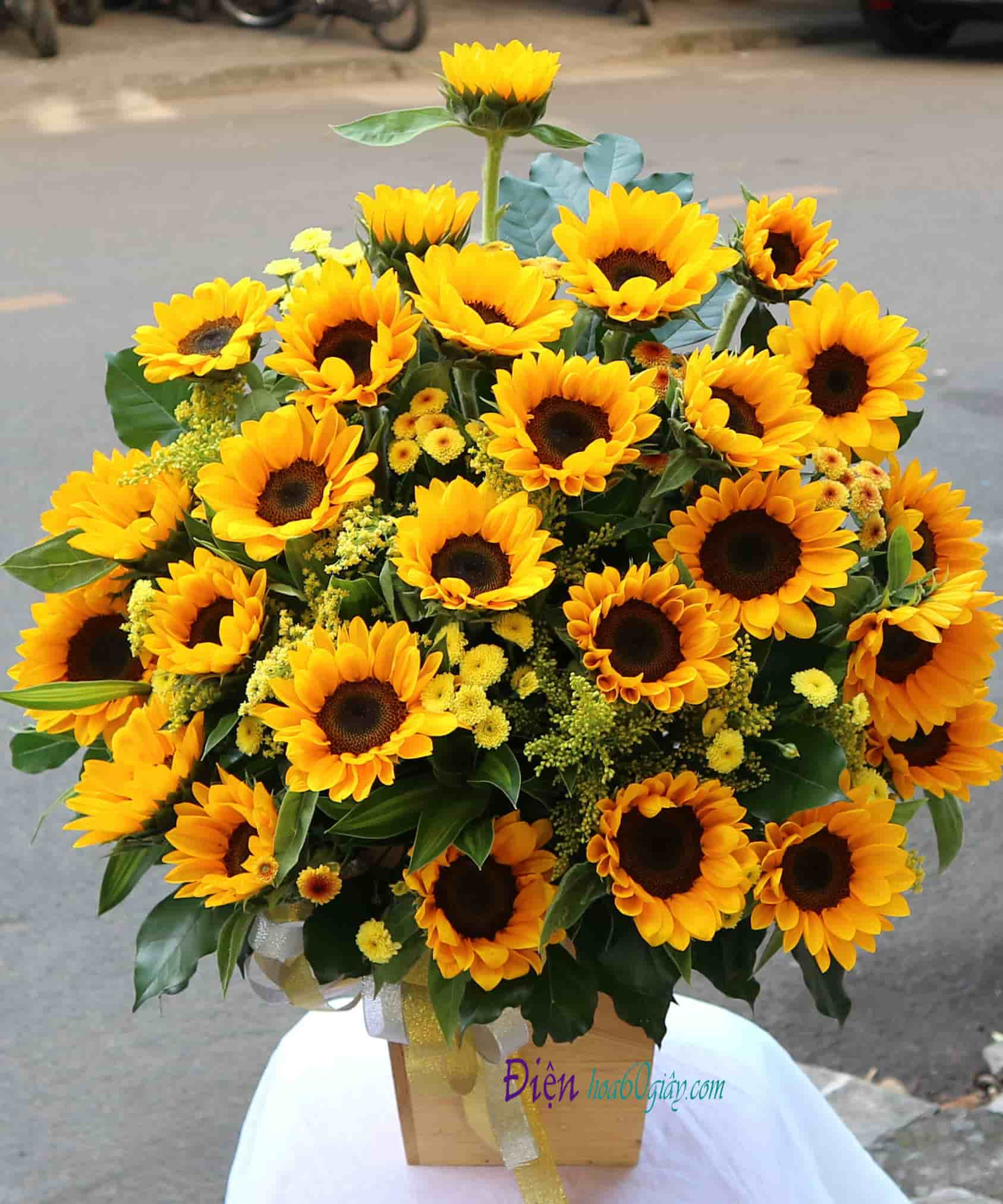 Hộp hoa hướng dương HHT02