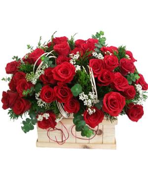 Hộp hoa tươi HHT14