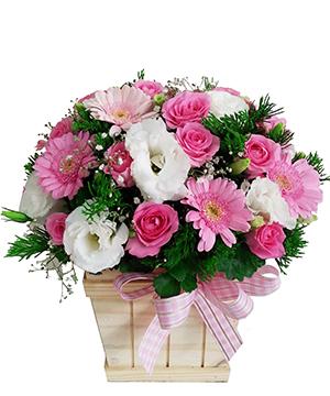 Hộp hoa tươi HHT13